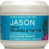 Jason Cooling Minerals & Tea Tree Muscle Pain Therapy 4 oz (113 g)